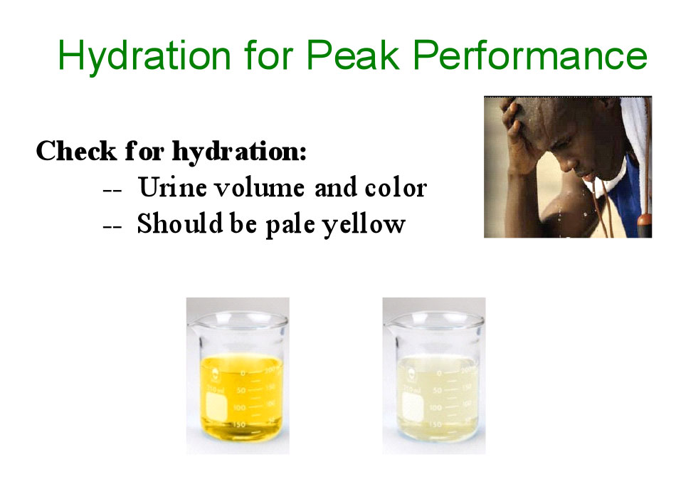 Hydration for Peak Performance